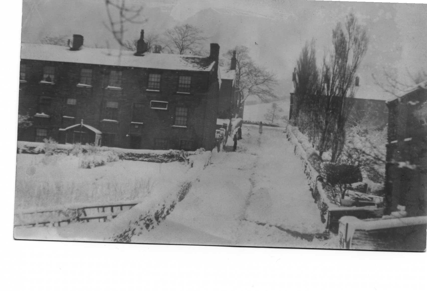 ohouseshill187